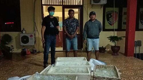 Polres Morut Sita 550 Kantong Miras Jenis Cap Tikus dan Berhasil Amankan 2 Orang Pelaku